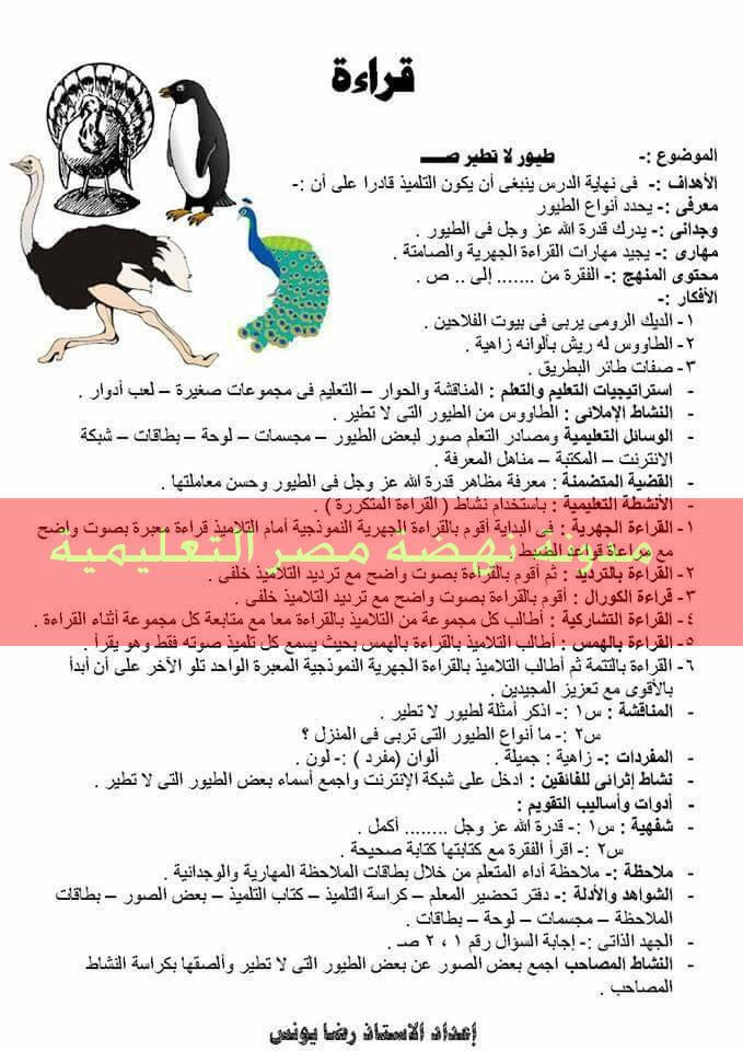 نموذج تحضير لغة عربية حديث للصف الرابع والخامس والسادس الابتدائى الترم الثانى بالقرائية روعة جدا  17343047_1311420498894112_6880168967500418904_n