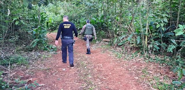 Itaquiraí - PMA de Naviraí autua em R$ 57,3 mil nove infratores presos por exploração ilegal de madeira em áreas protegidas por lei