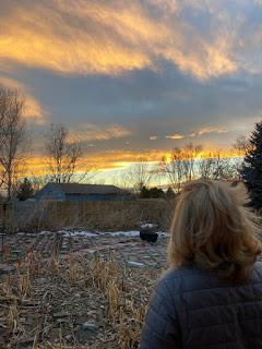 Urban Farm Sunset