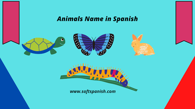Animals Name in Spanish, Learn Spanish in india