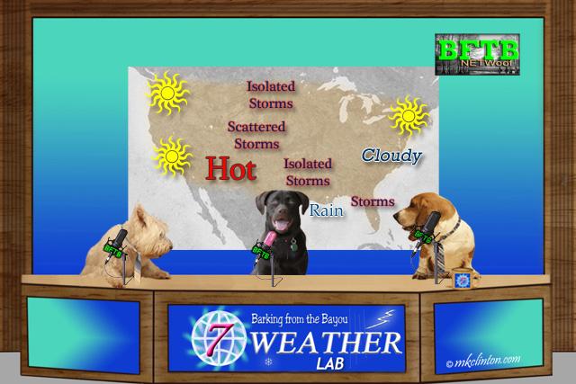 BFTB NETWoof Weather