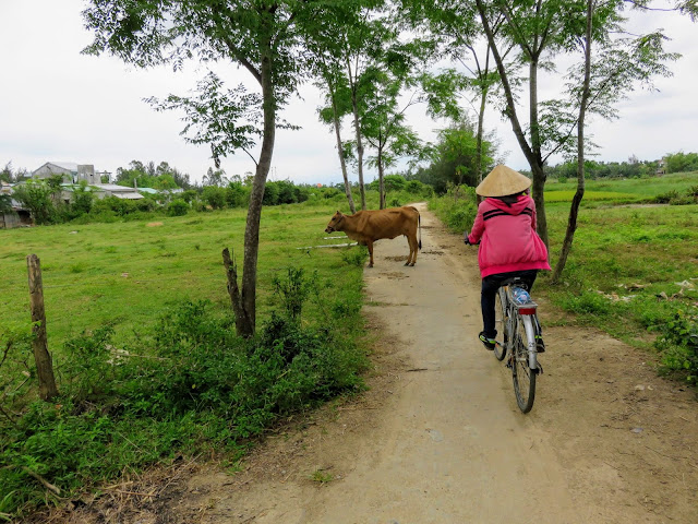Cycling near Hoi An with Heaven and Earth Bicycle Tours in Vietnam