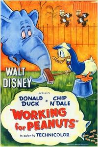 Watch Working for Peanuts Online Free in HD