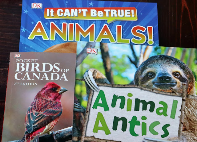 animal antics book