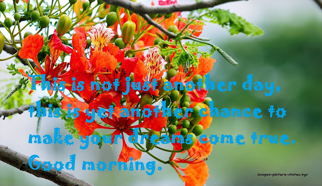 Unique good morning messages, good morning messages in english, good morning messages quotes, good morning messages for love, good morning messages for friends, good morning messages for friends with pictures, good morning wishes for friends, long good morning messages for her, special good morning wishes, good morning quotes, good morning msg