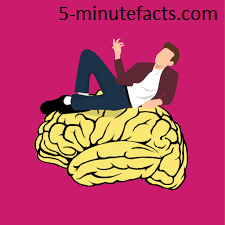 Top+10+interesting+facts+about+the+brain+psychology+facts+5-minutefacts
