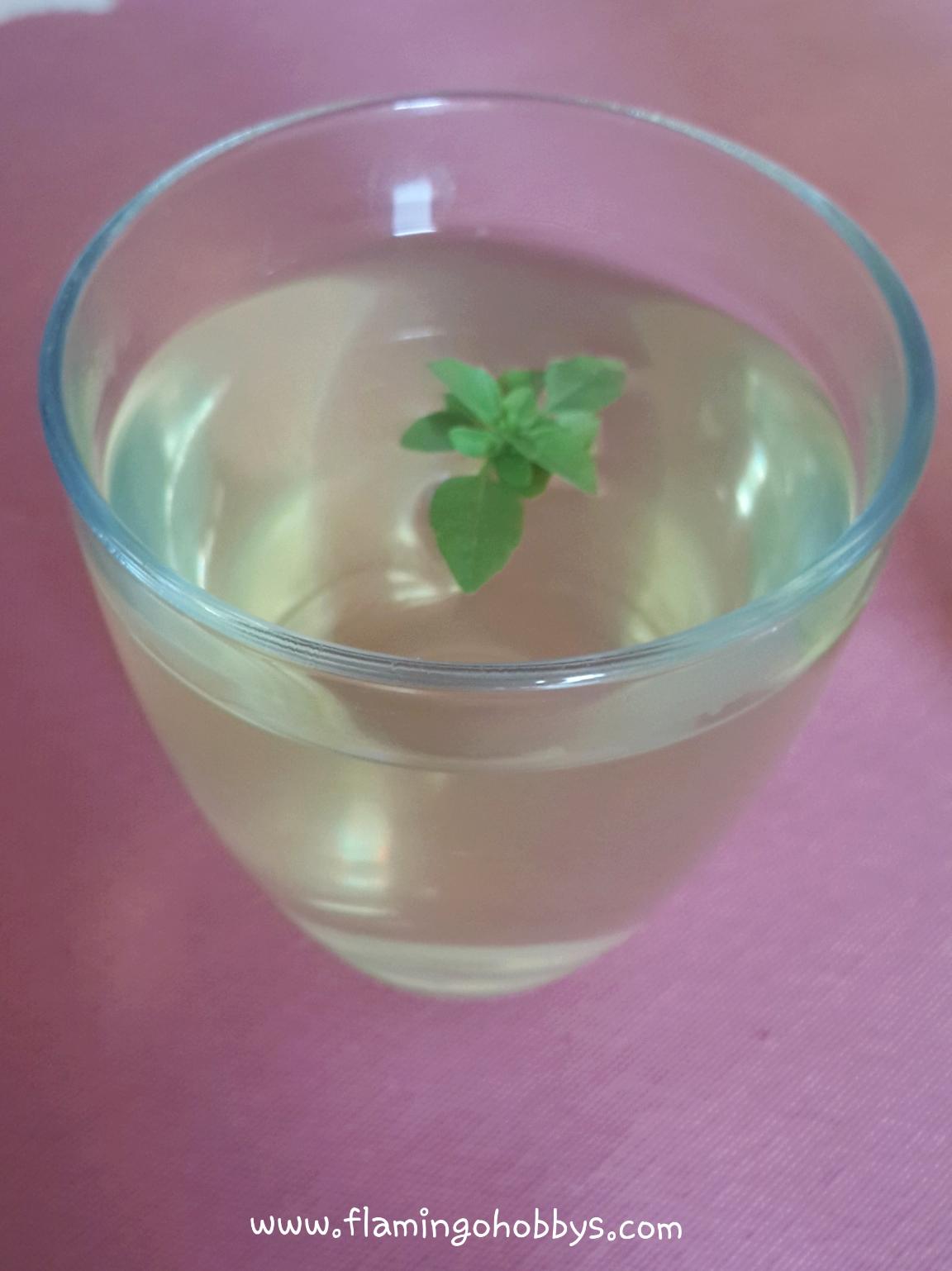 Maydanoz suyu nasıl hazırlanır