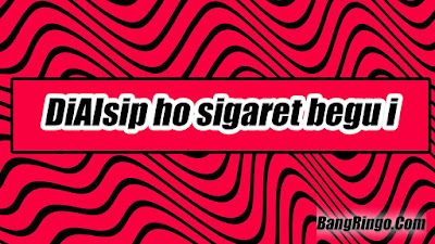 DiAlsip ho sigaret begu i