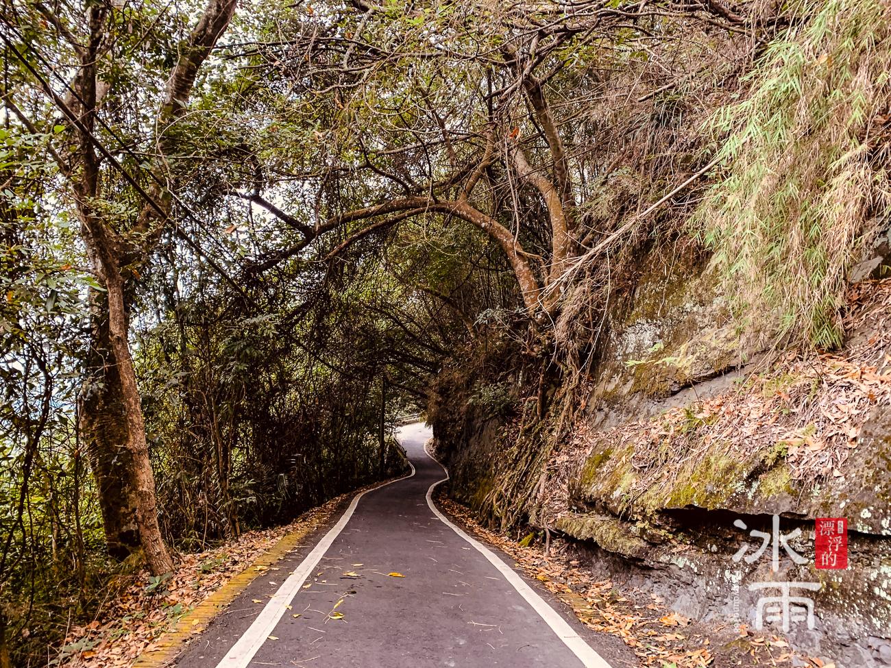 獅山古道|獅頭山風景區|馬路步道