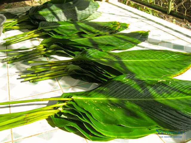 fresh phrynium leaves to cover the cake