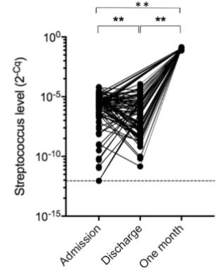 図:連鎖球菌レベル