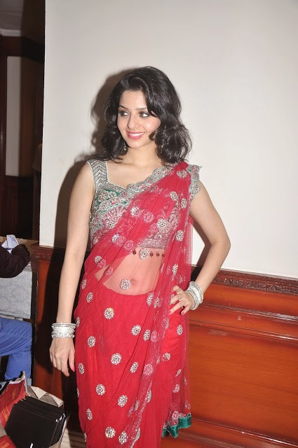 Vedhika Hot Pics in Red Saree