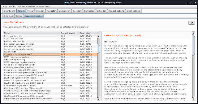 burp suite  Issue Definition