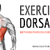 EXERCICES MUSCULATION DORSAUX