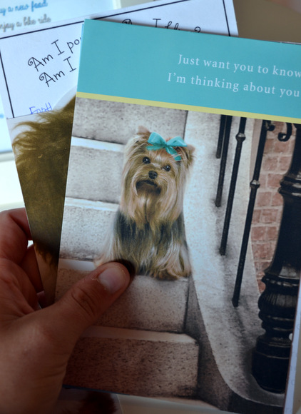 Greeting card with dog on the front