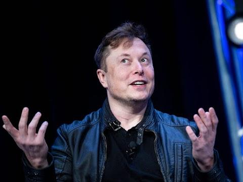 Long live the new flesh: Neuralink and the Musk effect.