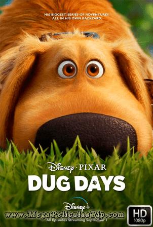 Dug Days Temporada 1 [1080p] [Latino-Ingles] [MEGA]