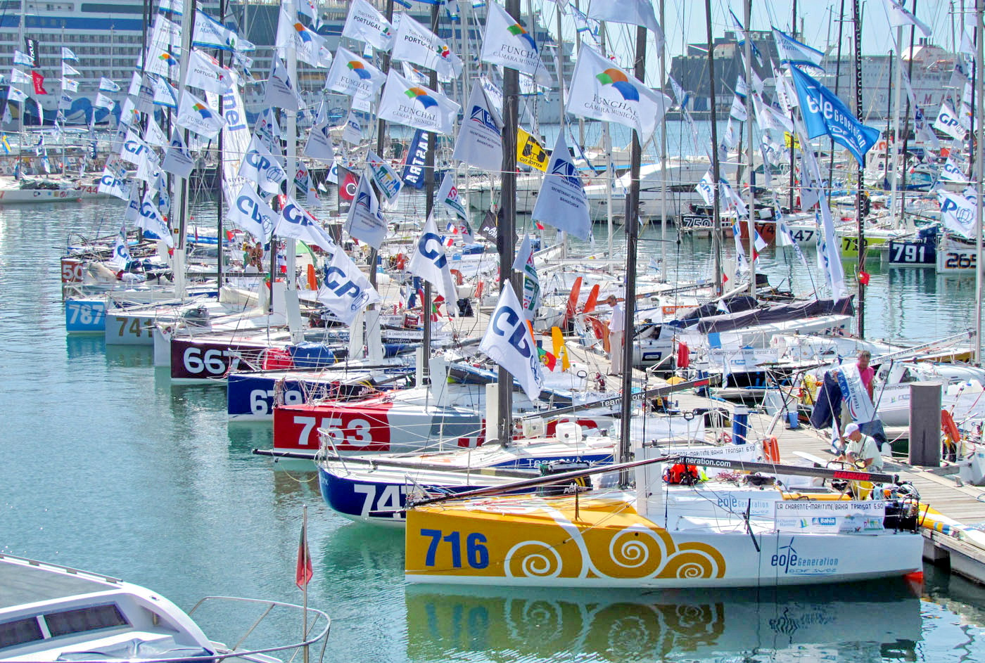 racers in Funchal Marina