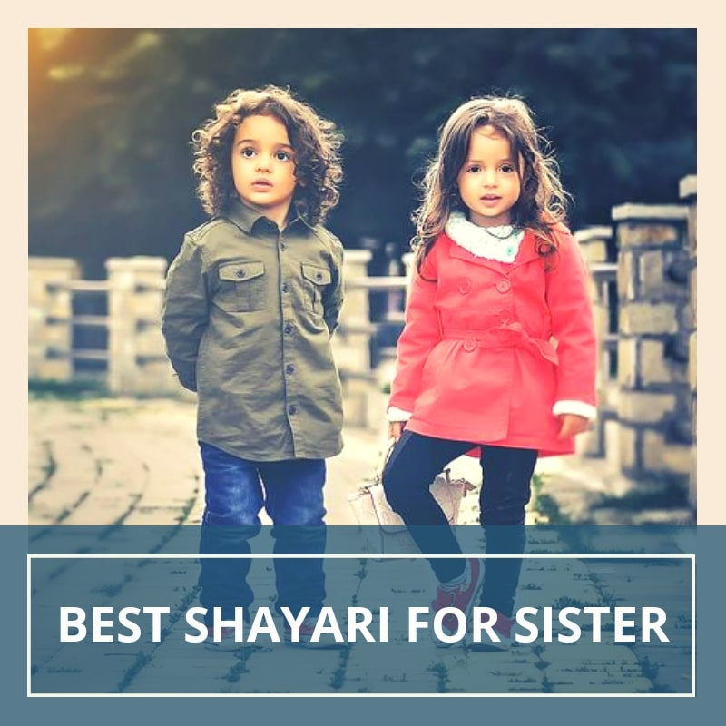 30 Beautiful Sister Shayari In Hindi बहन पर शयर