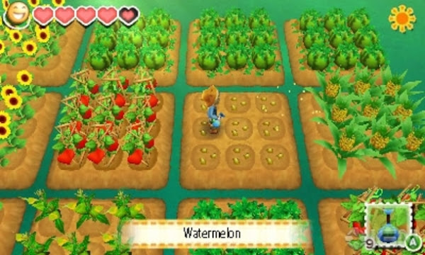 Story of Seasons: Trio of Towns (EUR) 3DS CIA + ROM + Decrypted Screenshots #4