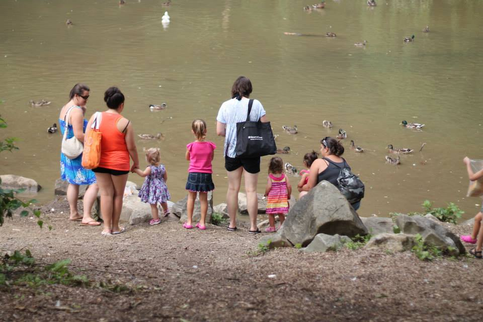 Duck Pond, Elizabeth PA, Round Hill Farm, RoundHill Park, Feeding Ducks