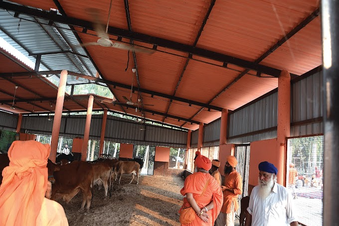 why these milk yielding cows ultimately comes in the category of stray animals, this is a big question:- Sant Seechewal