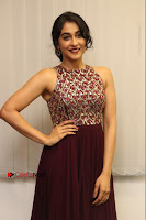 Actress Regina Candra Latest Stills in Maroon Long Dress at Saravanan Irukka Bayamaen Movie Success Meet .COM 0005.jpg