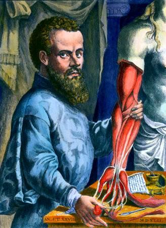 médico flamenco Andreas Vesalius autopsia