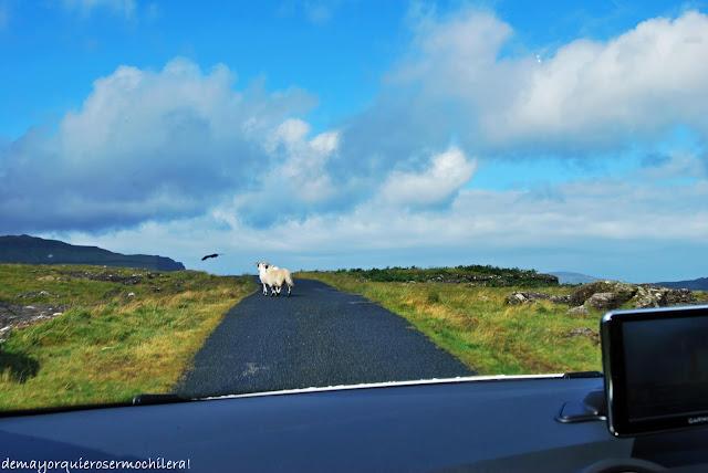 Carreteras de Escocia