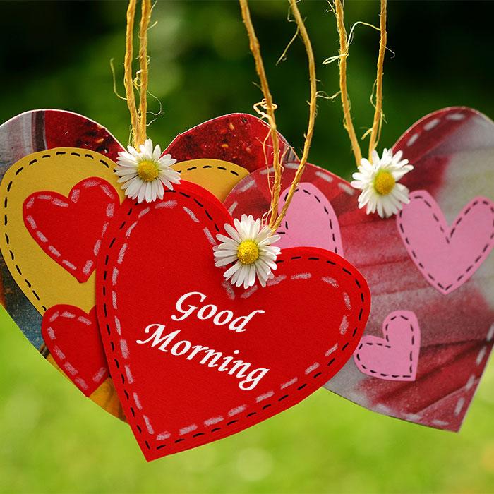 Good Morning Hd Wallpaper Good Morning Wallpaper For Love
