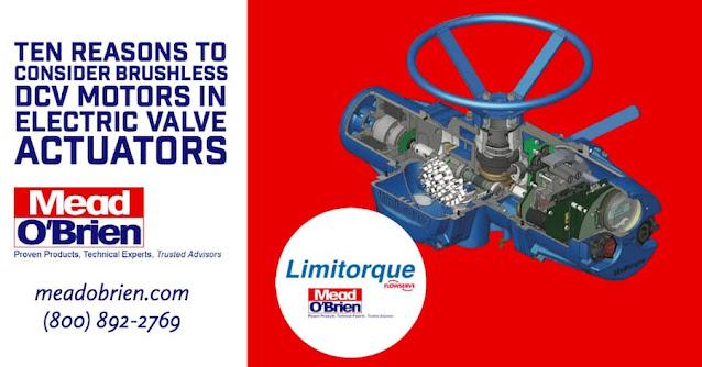 Brushless DCV Motors in Electric Valve Actuators