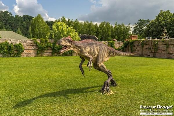 Bałtów - w krainie dinozaurów