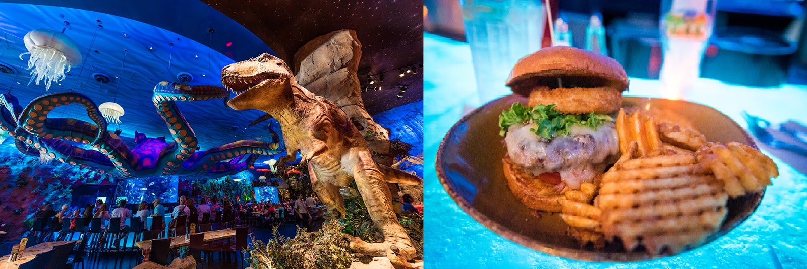 Top 10 table service restaurants at walt disney world for Disney dining reservations t rex