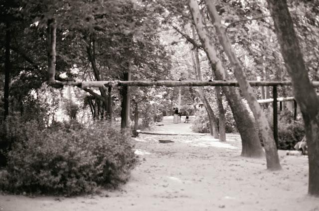 Ouzbékistan, Tachkent, © Louis Gigout, 1999
