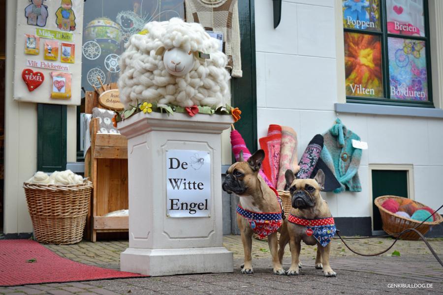 Texel Urlaub mit Hund Den Burg