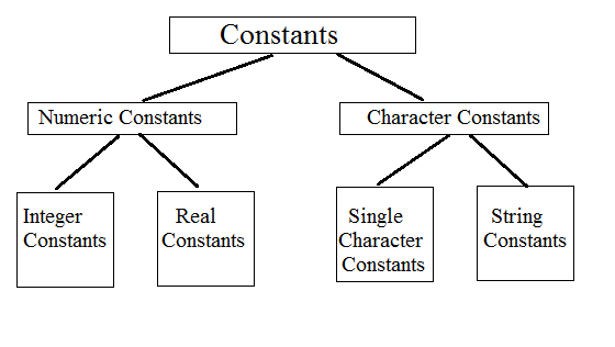Constants and Basic types of Constants