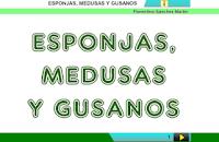 http://cplosangeles.juntaextremadura.net/web/cuarto_curso/naturales_4/esponjas_medusas_gusanos_4/esponjas_medusas_gusanos_4.html