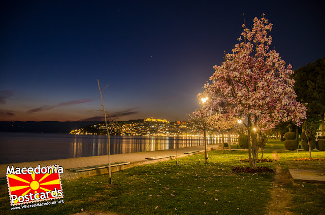 Ohrid city at night, #Ohrid #Macedonia #Magnolia