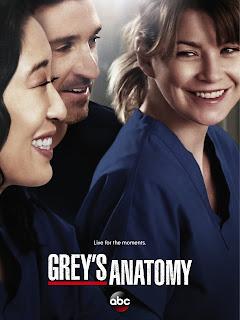 Greys Anatomy Temporada 10 1080p Dual Latino/Ingles