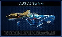 AUG A3 Surfing