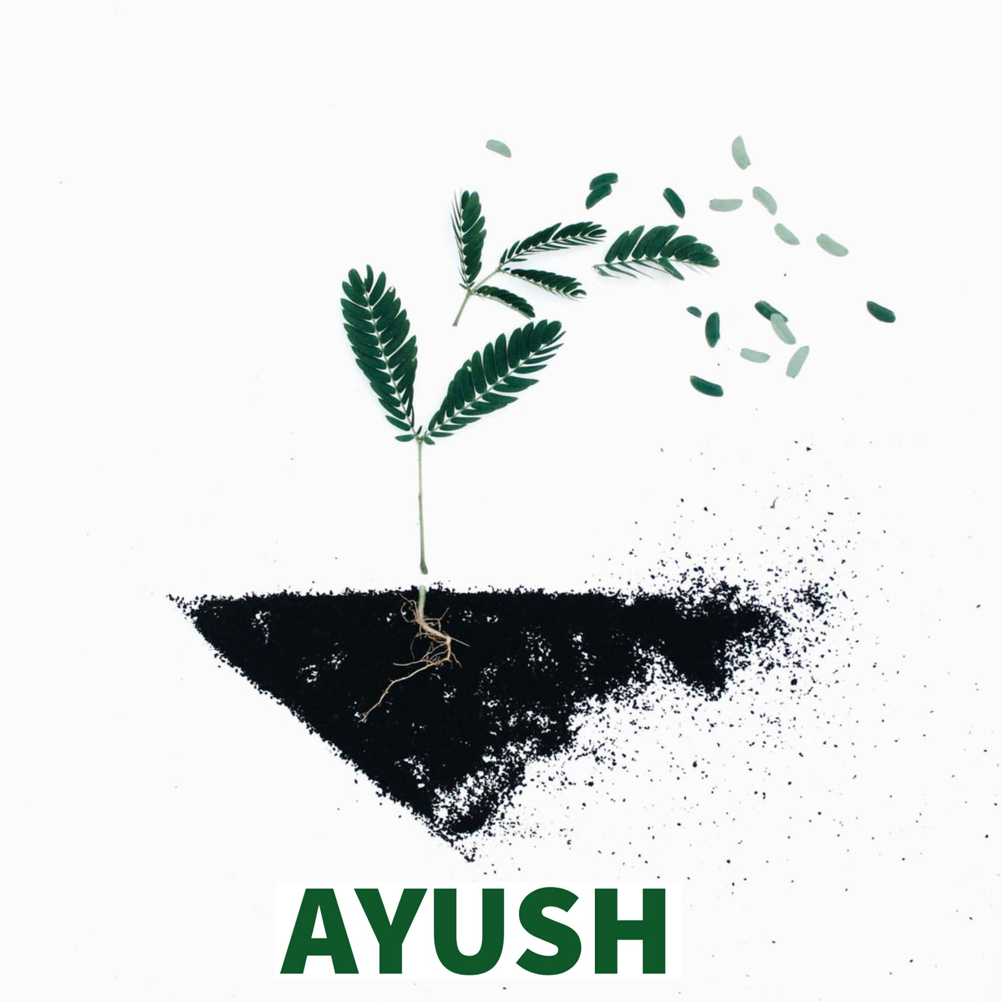 "Ayush means ""Life."" What is your Ayush? Live Pure Natural well-being life with Ayush. AYUSH is a socially conscious health and wellness organization. BY AYUSH HEALTH AND WELLNESS™"