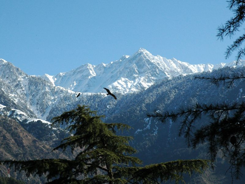 Dharamsala images winter snow