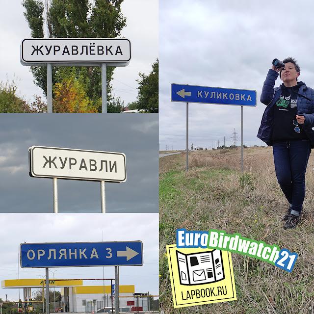 населенные пункты с птичьими названиями в Крыму