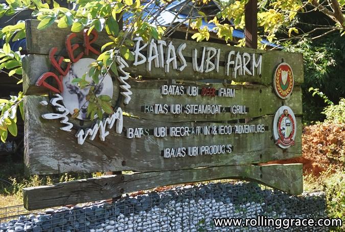 Batas Ubi Deer Farm at Yan, Kedah