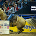 2019 NFR Las Vegas 7th Go-Round Results