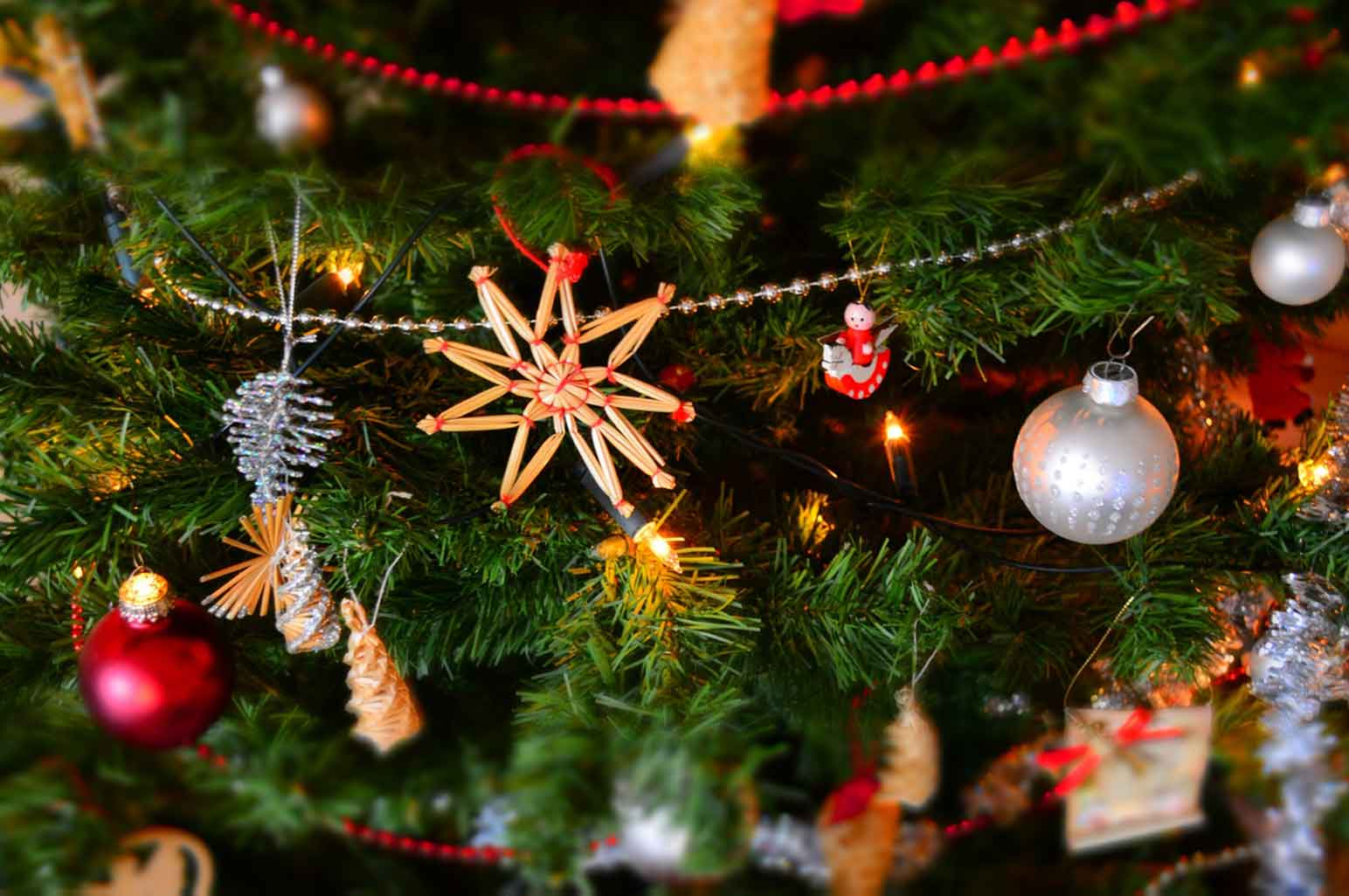 Staying Active and Mindful During the Holiday Season