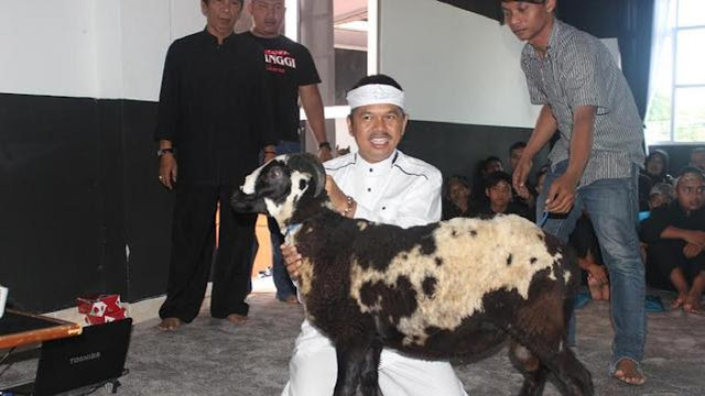 Kaget Tagihan Listrik Naik hingga Rp3 Juta, Dedi Mulyadi: Masak Domba Saya Nonton Drakor