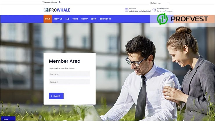 Prowhale Global обзор и отзывы HYIP-проекта