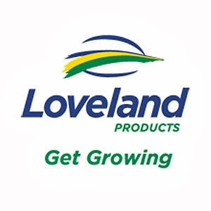 Video Production Companies in Loveland, CO