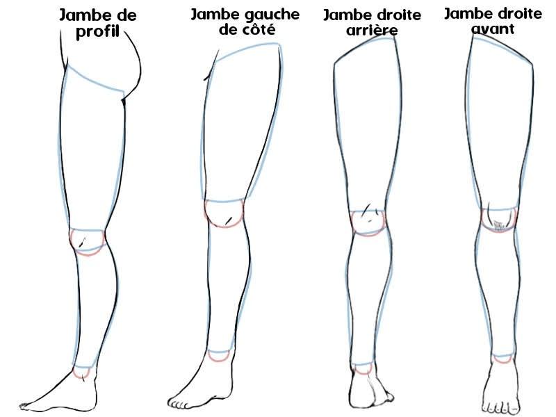 dessiner la jambe manga